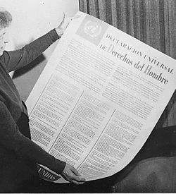 The Universal Declaration of Human Rights in Spanish