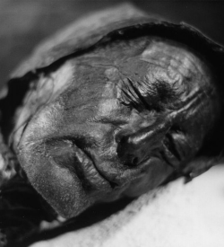 Face of the Tollund Man