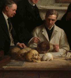 Scientists looking at skulls