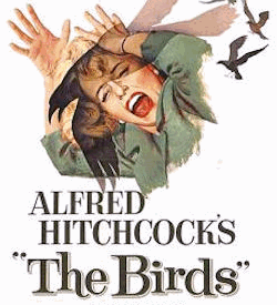 Alfred Hitchcock's The Birds film poster