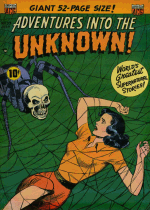 Cover For Adventures Into the Unknown