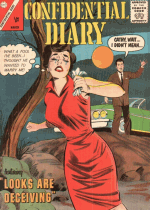 Cover For Confidential Diary