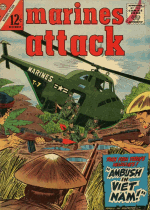 Cover For Marines Attack