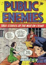 Thumbnail for Public Enemies