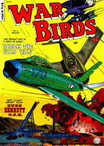 Cover For War Birds
