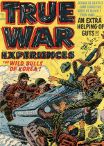 Cover For True War Experiences