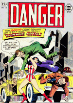 Cover For Danger