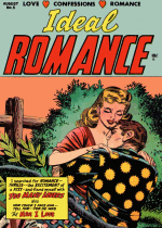 Cover For Ideal Romance