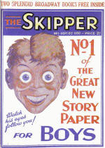 Cover For The Skipper