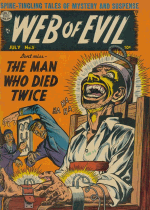 Cover For Web of Evil