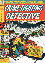Cover For Crime Fighting Dectective