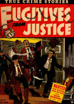 Cover For Fugitives from Justice