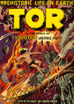 Cover For Tor