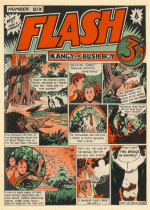 Cover For Flash