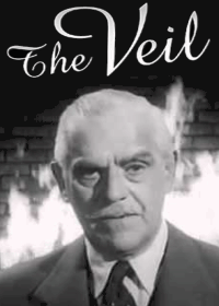 Large Thumbnail For The Veil