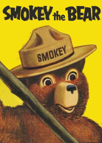 Large Thumbnail For Smokey the Bear