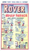 Cover For The Rover 1054