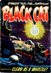 Large Thumbnail For Black Cat #49