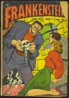 Cover For Frankenstein 25