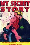 Cover For My Secret Story 29