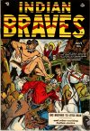 Cover For Indian Braves 3