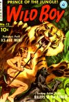 Cover For Wild Boy 3 (12)