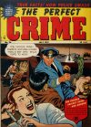 Cover For The Perfect Crime 26