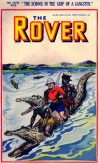 Cover For The Rover 999