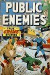 Cover For Public Enemies 1