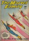 Cover For The Marvel Family 25