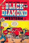 Cover For Black Diamond Western 41