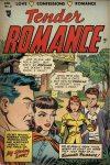 Cover For Tender Romance 2
