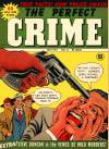 Cover For The Perfect Crime 12