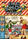 Cover For Big Shot 4