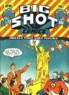 Cover For Big Shot 12