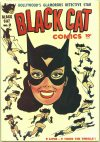Cover For Black Cat 2