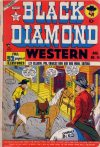 Cover For Black Diamond Western 14