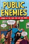 Cover For Public Enemies 8