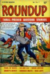 Cover For Roundup 4