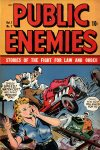 Cover For Public Enemies 7