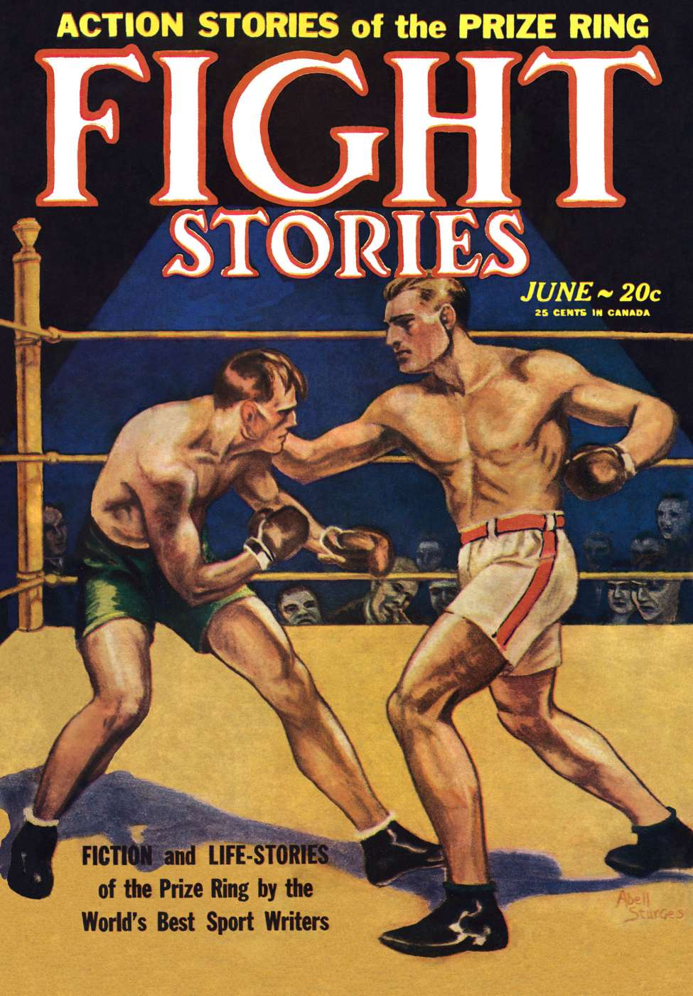 Comic Book Cover For Fight Stories v01 01