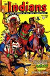 Cover For Indians 13