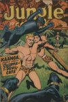 Cover For Jungle Comics 80