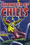 Cover For Chamber of Chills 17