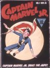 Cover For Captain Marvel Jr. 1 (fiche)