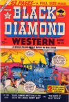 Cover For Black Diamond Western 20