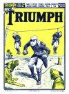 Cover For The Triumph 765