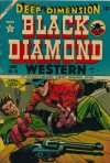 Cover For Black Diamond Western 51
