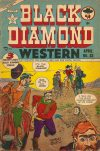 Cover For Black Diamond Western 33