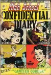 Cover For High School Confidential Diary 2